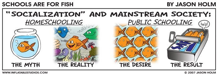 """Click to see the article """"unschooling fact vs myth"""""""