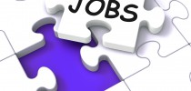 Jobs Puzzle Shows Vocational Guidance And Employment
